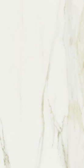 24 in. x 48 in. Classici Calacatta Gold Glossy Porcelain Tile | Kitchen | Bathroom | Wall | Floor