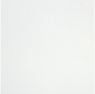 Thassos White 12 in. X 12 in. Honed Marble Floor & Wall Tile - Select Grade