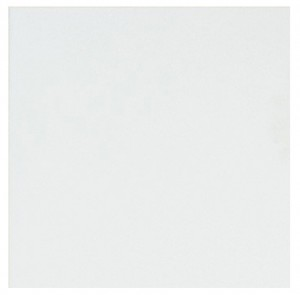 Thassos White 18 in.X18 in.Polished Marble Floor & Wall Tile