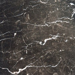 Laurent Brown Polished Marble Floor & Wall 12 in. x 12 in. Tiles