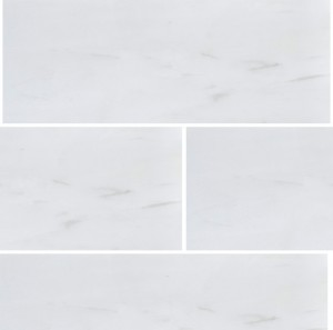 Dolomite 3 in. x 9 in. Polished Marble Floor & Wall Tile