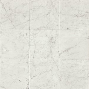Carrara White 12x12 Tile Honed - Marble from Italy