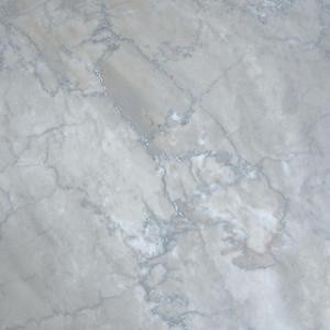 12 in. x 12 in. Temple Grey Polished Marble Floor and Wall Tiles