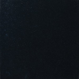 Premium Black Granite 18 in x 18 in. Polished Tile