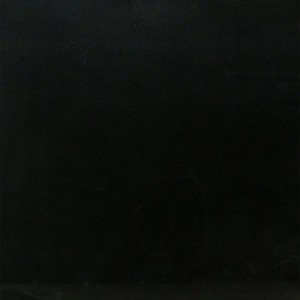 Premium Black Granite Honed 18 in. x 18 in. Tile
